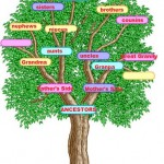 November 2012 Power Must Change Hands (PMCH) Programme – DELIVERANCE OF THE FAMILY TREE – PART 1