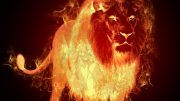 FIERY LION OF JUDAH